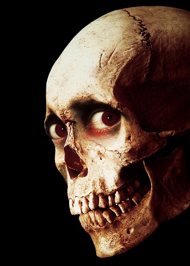 Evil Dead 2™ Dead by Dawn Skull Poster